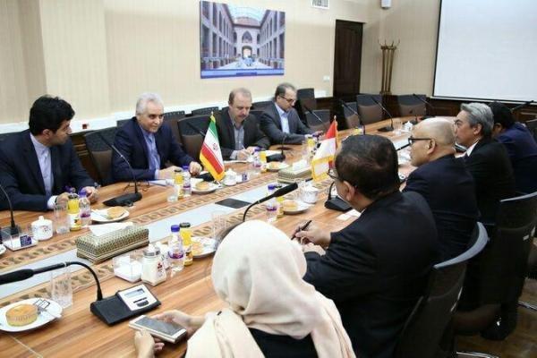 همکاری ایران و اندونزی در حوزه فناوری اطلاعات گسترش می یابد