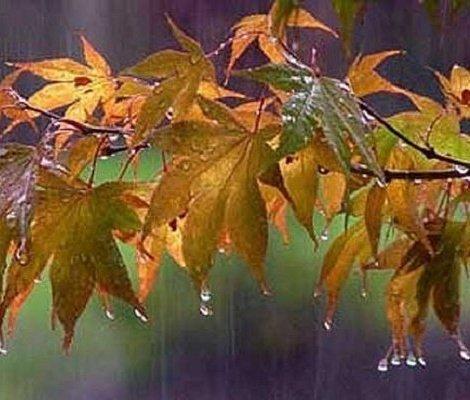 وضعیت بارش باران در مهر و آبان 98