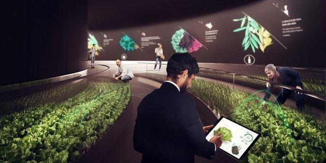 پرورش دیجیتالی مواد غذایی در سوپرمارکت های آینده
