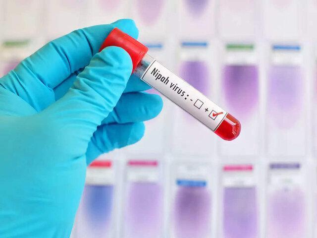 خطر همه گیری ویروس شایع شده در مناطقی از آسیا