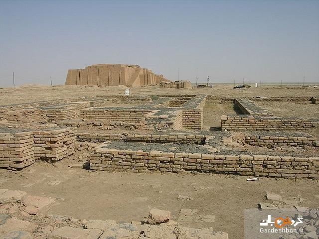 قدیمی ترین موزه دنیا در کدام کشور است؟