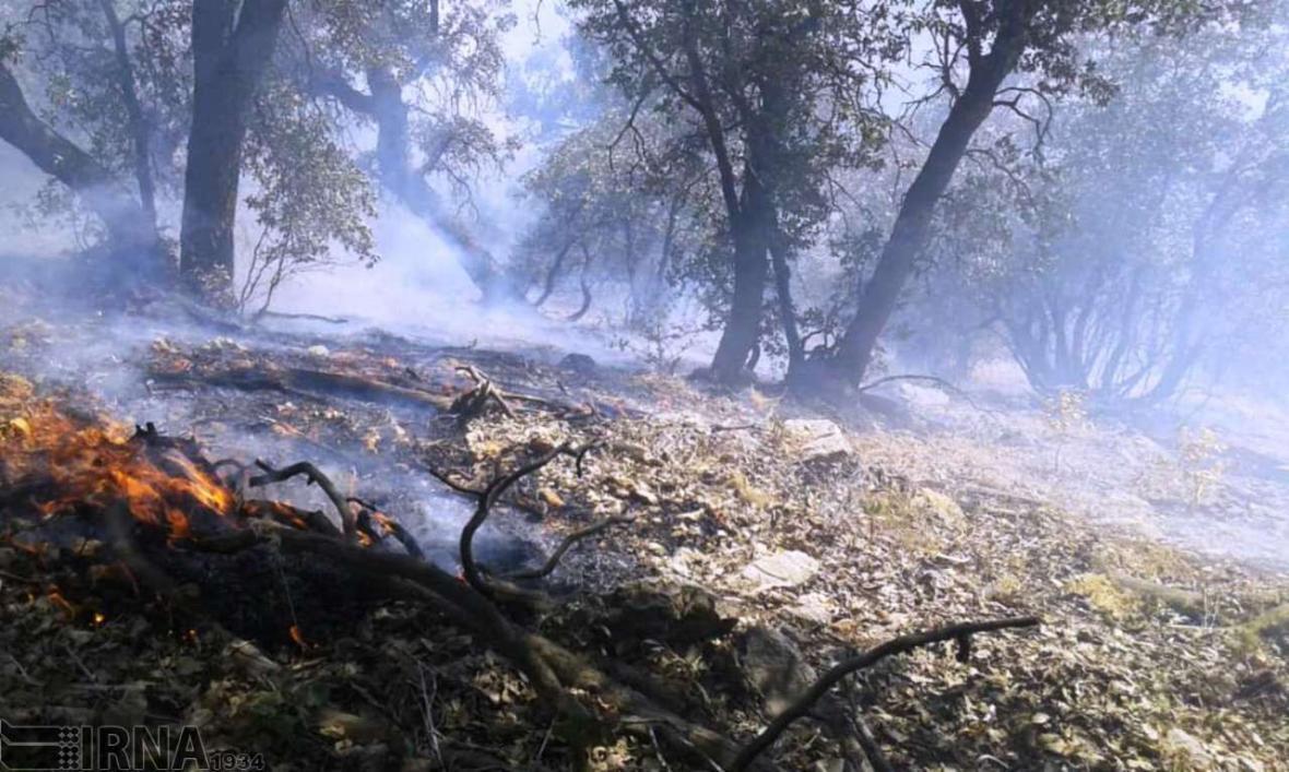 خبرنگاران آماده باش جنگلبانان گلستانی برای خاموش کردن آتش