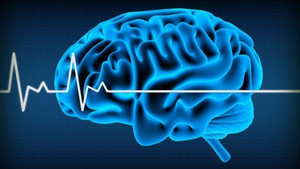 تفاوت مرگ مغزی و کما؛ آیا امکان بازگشت به زندگی وجود دارد؟